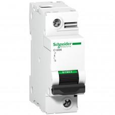 Выключатель автоматический 1п 100А C C120N